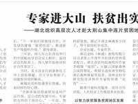 今天,《中国劳动保障报》又报道麻城了,这次是头版!