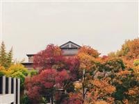 河南高校秋景大片C位出道!固始人快看看有没有你的学校?