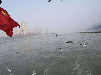 疫情期间,泸州男子在长江水域非法捕捞被抓获