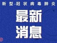 2020年2月20日0时至12时山东省新型冠状病毒肺炎疫情情况