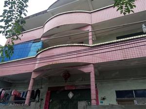 新埠島私家住宅整棟三層9房3廳3衛450平米出租6000元