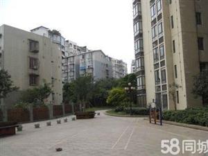 龙湾3982室2厅1卫