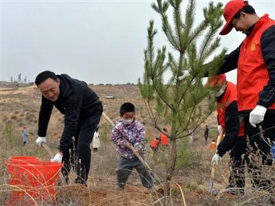 造林绿化忙   横山800名机关干部集中义务植树5000余株