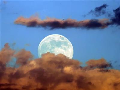 今日中秋,拥一轮明月入怀,愿有人与你共婵娟!
