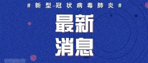 2020年2月20日12时至24时山东省新型冠状病毒肺炎疫情情况