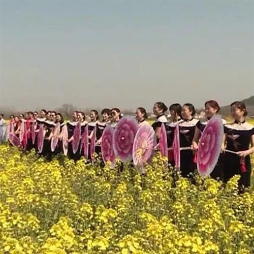 仙居国家农业公园:万亩油菜花吐艳观花赏景正当时