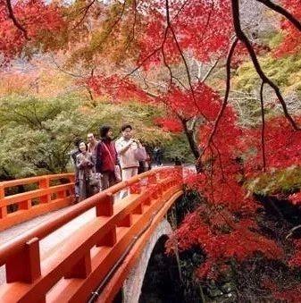 怀化秋天最上镜的15个地方,沅陵这个地方不拥挤!够惊艳!