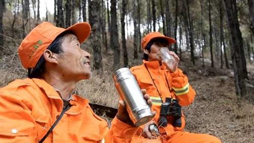 涉县庙峧林场:夫妻护林近30年,抱牛取暖煮雪喝水,称死也要死在山上