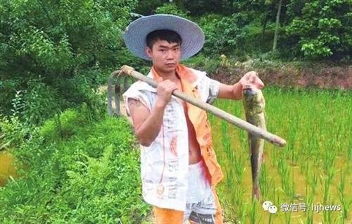 瞧,合江乡村网红刘金银转型啦!