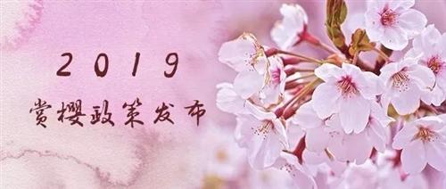 武大赏樱预约已开启!最全攻略奉上,2019一起走花路吧!