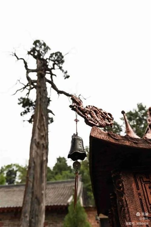 洛�新安��柯山,千年道教圣地,�髡f王�淘诖顺上�
