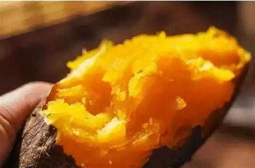 合江美食:吃红薯能长胖还是能减肥?这样吃能减肥吃错就容易发胖