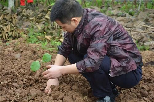 农耕,体验不一样的生活!