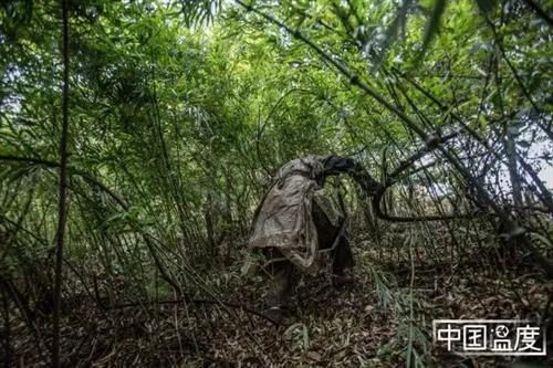 残酷的美食真相:抢山头的镇雄挖笋人|中国温度