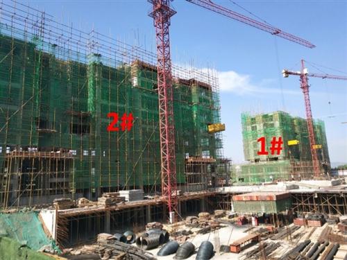 新安现代森林国际城工程进度|渐入佳境未来可期
