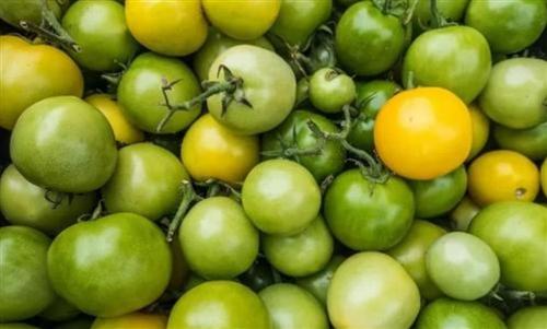 """【分享】4种水果被列入""""黑名单"""",看看有你喜欢的吗?"""