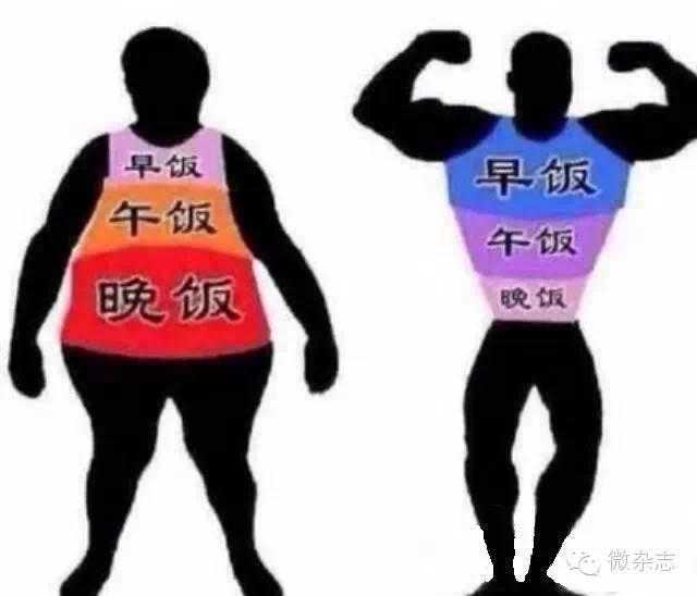 晚餐决定你的体重和寿命