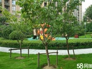 水果仓附近橘子洲95平三楼毛坯两室两厅37.5万