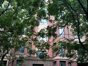 一楼带院,户型好,适合老人居住,环境优美