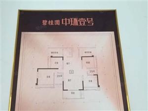 碧桂园中环一号3室2厅2卫