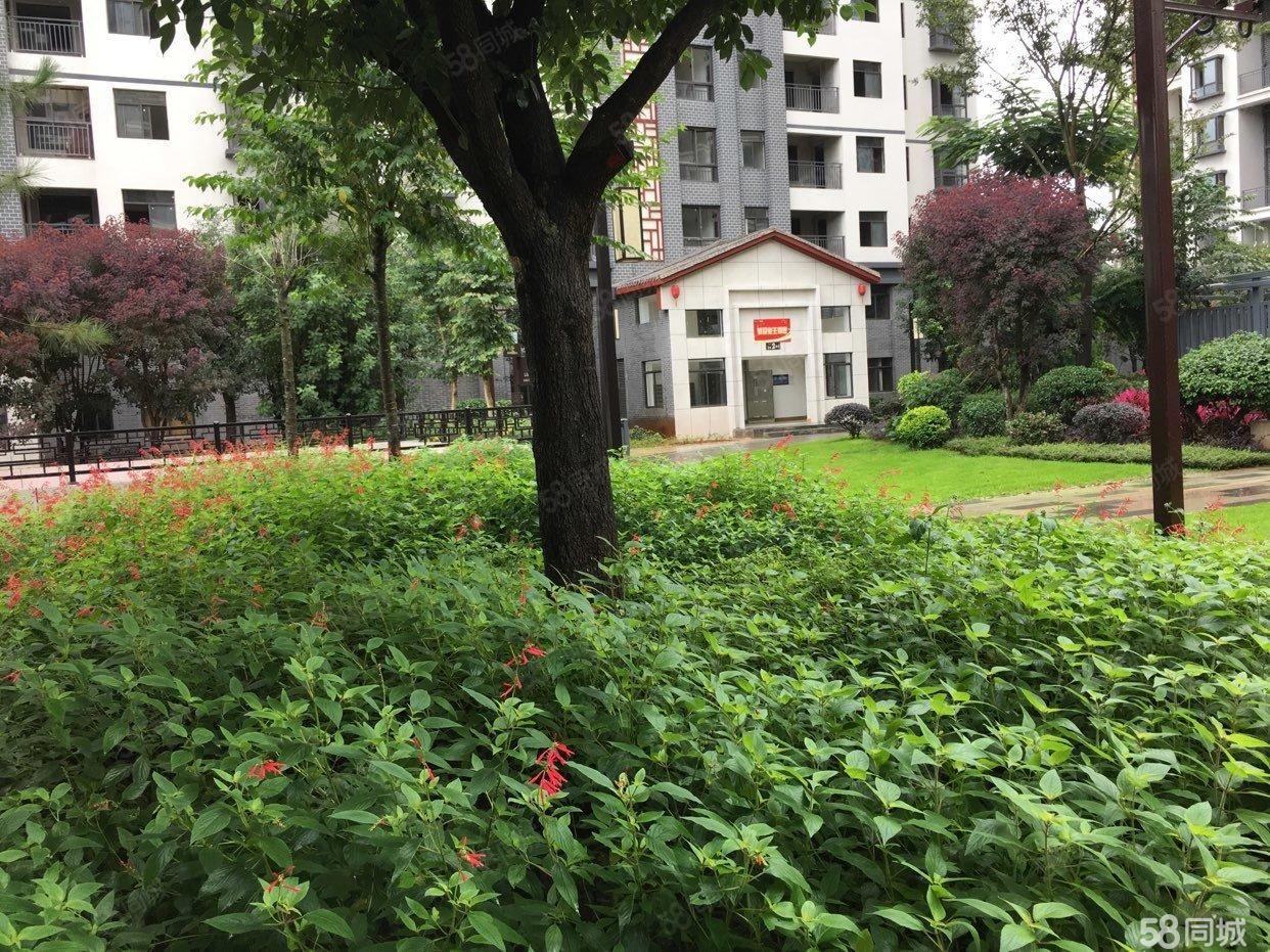 盛景园127平米单价仅4400/平米优质房源