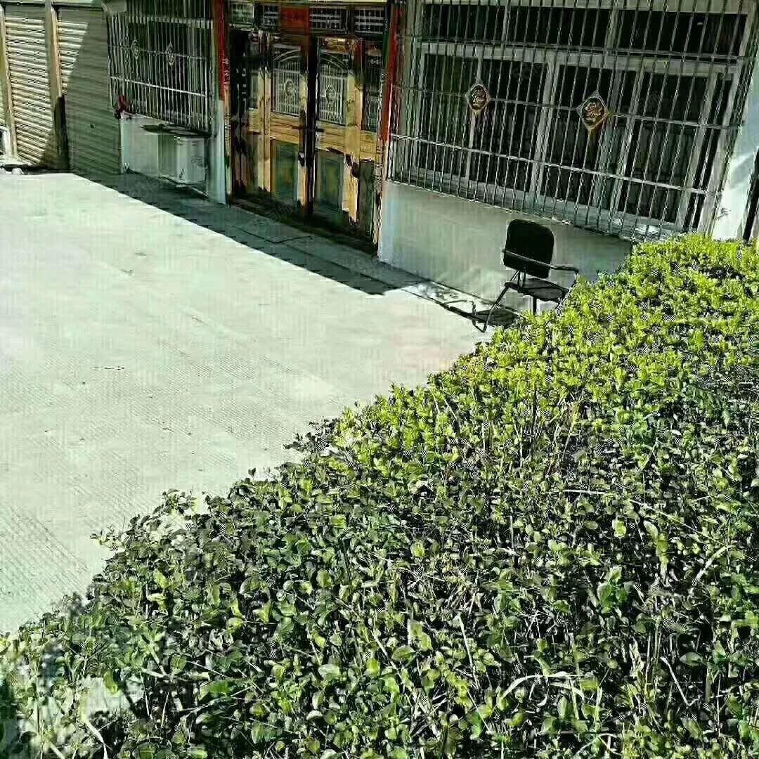一楼带花园养老必备还可以做商业