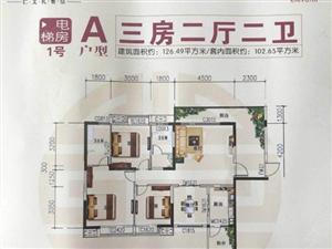 十二号大院3室2厅2卫入户花园一次性付款直接更名网签