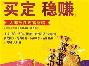 杨府山公园(置信江南里)首付40万起买一手旺铺新城核心地段