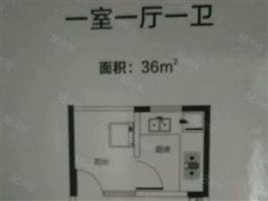 紫金山航海路紫金悦城均价7000双气双地铁口可下房本