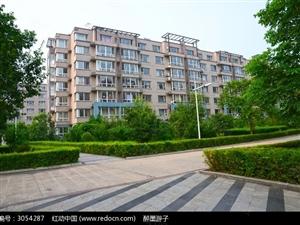 文化二村一楼带院两室一厅院子60多平含两间配房