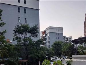 泽润龙都三期5楼住房出售简单装修