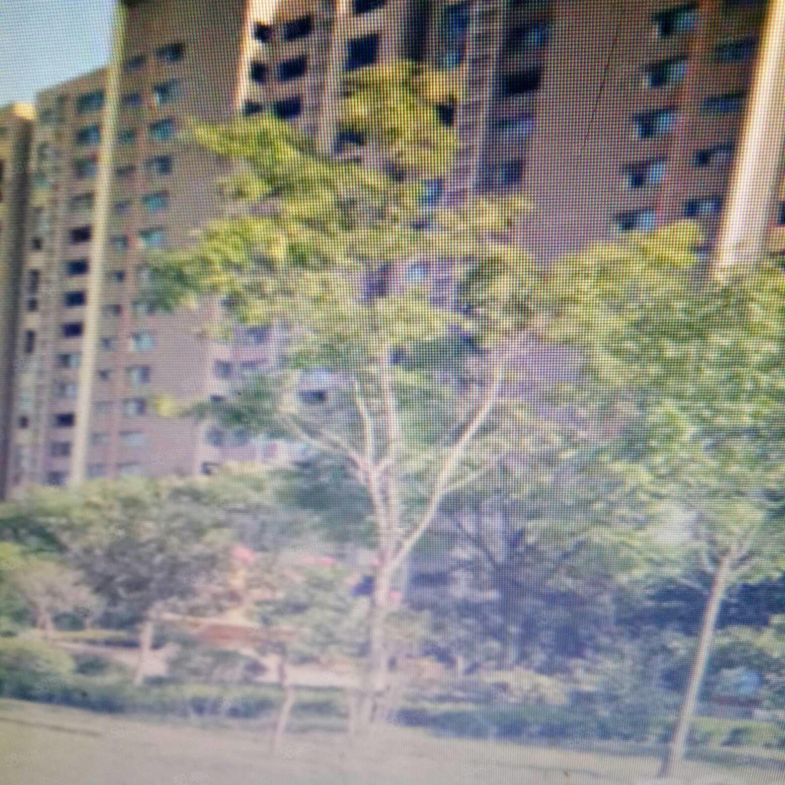 香榭丽舍15楼三室二厅办公