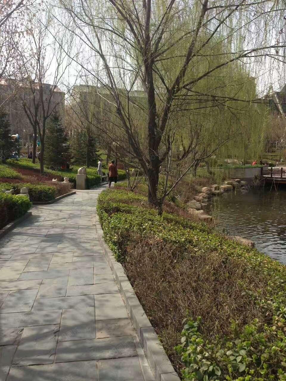 卢龙刘田庄泰和家园111平米6楼30万带下房