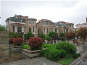 君悦地产丽园名城联排别墅,123层,超低价位,随时看房