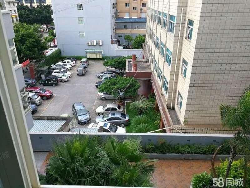 淘宝街旁富然三区5楼精装800元/月公寓带家具家电