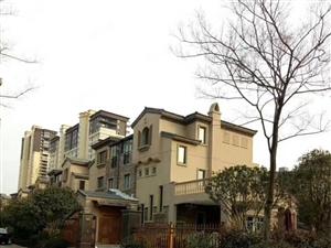 碧桂园三期双拼256平高性价比别墅,单价八千多