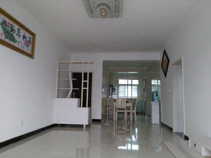 城东新区城东大市场新房两室两厅精装