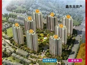 碧桂园.御龙湾,单价:8600/平米,东门龙头展豪宅风范