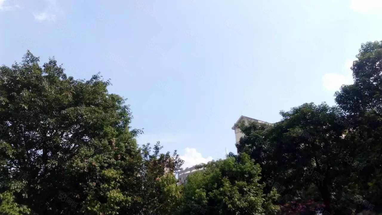 河东体育馆旁边公寓式住宅清水房出租