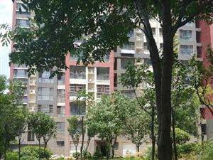 光明东路明珠花园5楼3室2厅120平方米中等装修水电煤暖