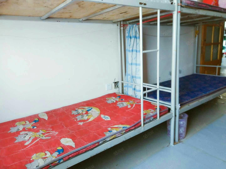 埃德蒙顿清河湾女生宿舍寝室价格优惠家电齐全图片浪女生图片