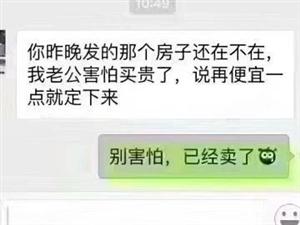 耀江豪庭电梯房高层南北通透一次性付款优先