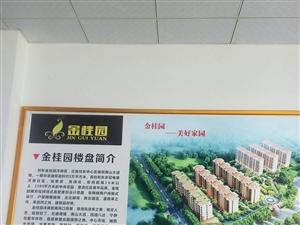 金桂园,花园式的洋房,有四居室,三居室户型,二月三日盛大开盘