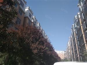 急售毛坯2700,欧洲花园高层,现诚心出售此房