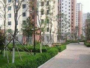 渤海大学东门的门市2室2厅115平米简单装修年付