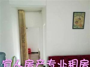 (看房方便)平安路平安名居一室一厅照片实拍拎包入住