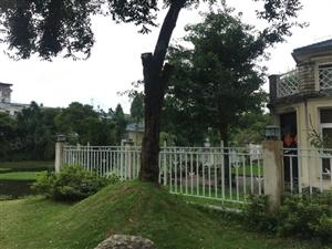凤麓湖畔独栋湖景别墅紧靠来凤湖带200平花园全新精装