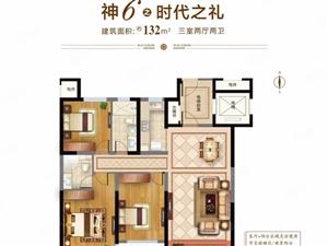 理想之城玉兰花园新楼加推132三室刚需住宅