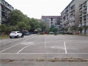 教育局对面6楼住房出租