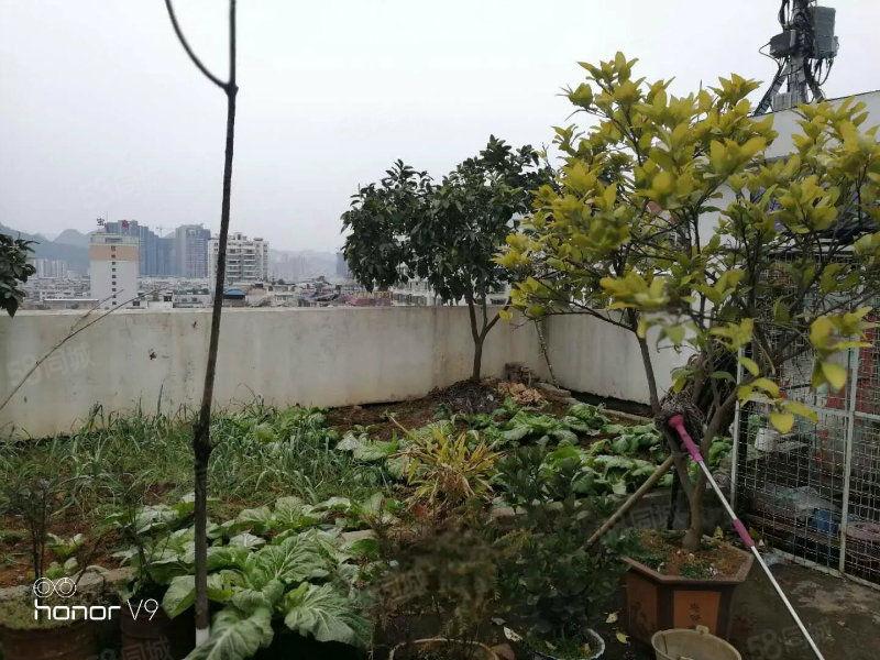 宝鑫酒店对面清水花园带顶楼喔